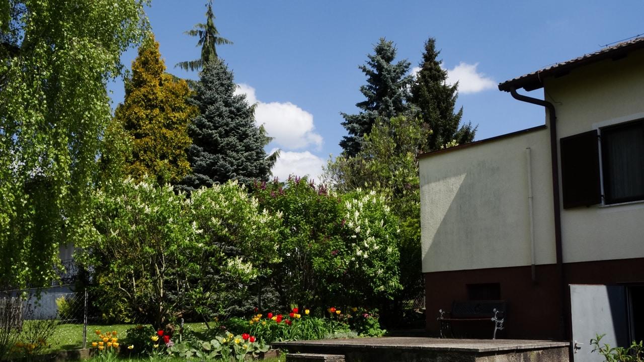 Haus im Waldviertel leistbar mieten