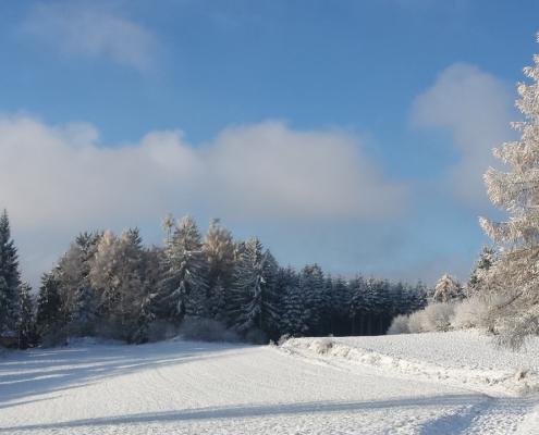 Winterlandschaft im Waldviertel